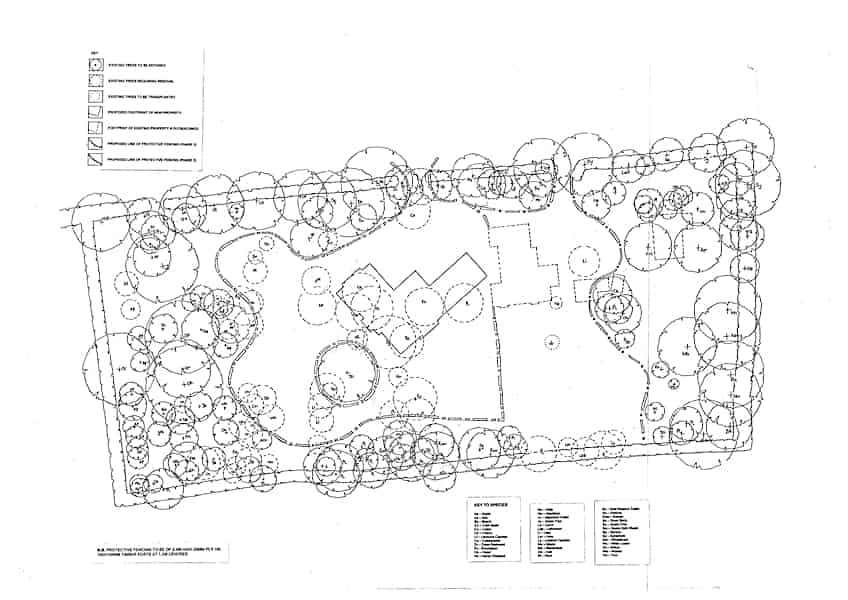 Arcadia Blog - The Walled Garden - Planting Plan 03