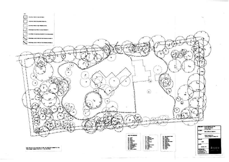 Arcadia Blog - Oakridge House - Tree Protection Plan